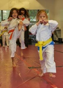 Boca Raton karate & kickboxing